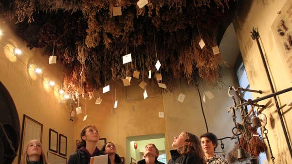 Gli Etruschi e la cura, appuntamento all'Aboca Museum
