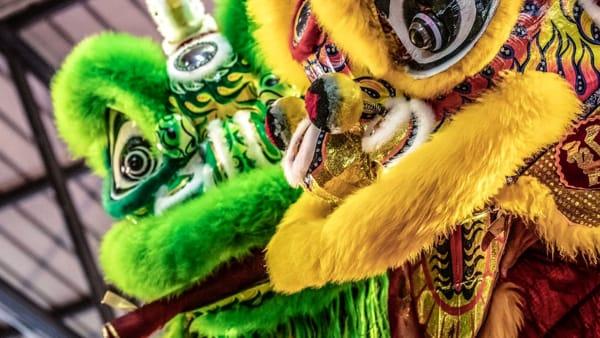 """Il Capodanno cinese? Anche in provincia di Arezzo con """"La lupa e il dragone"""""""