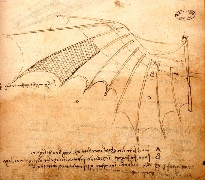 01 - Leonardo da Vinci, Ms. B, c. 74r (particolare)